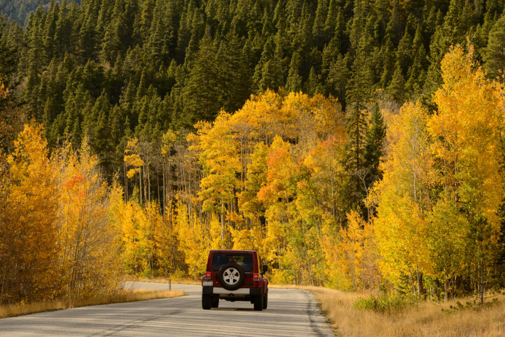 A red Jeep Wrangler drives toward Cottonwood Pass through bright fall aspen trees.